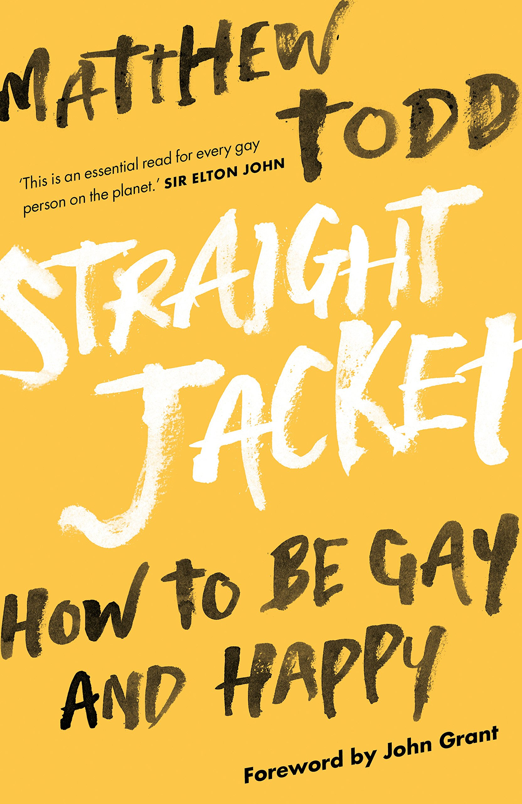 Straight Jacket How to be Gay and Happy - Matthew Todd